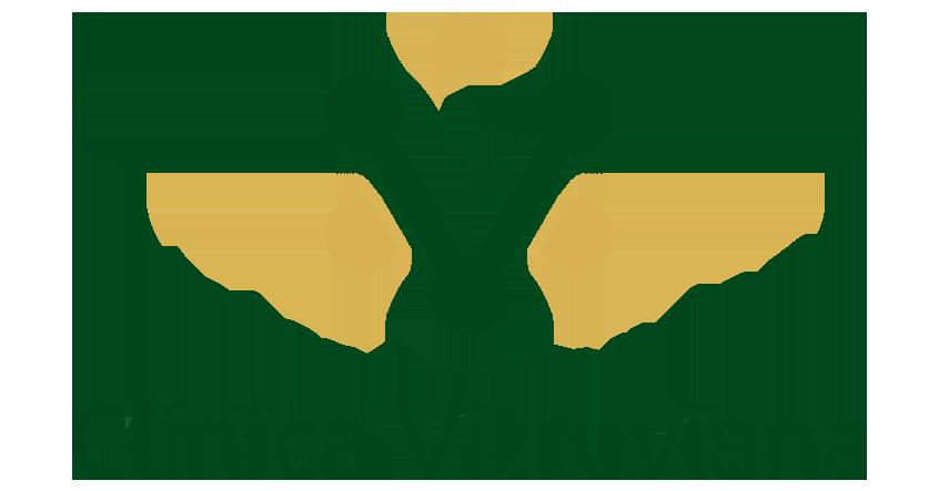 logo-vitruviana